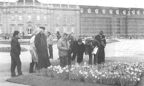 ludwigsburg avec des fleurs